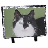 Black and White Cats Face Photo Slate Photo Ornament Gift