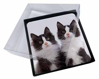 4x Black and White Kittens Picture Table Coasters Set in Gift Box