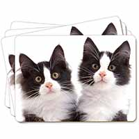 Black and White Kittens Picture Placemats in Gift Box