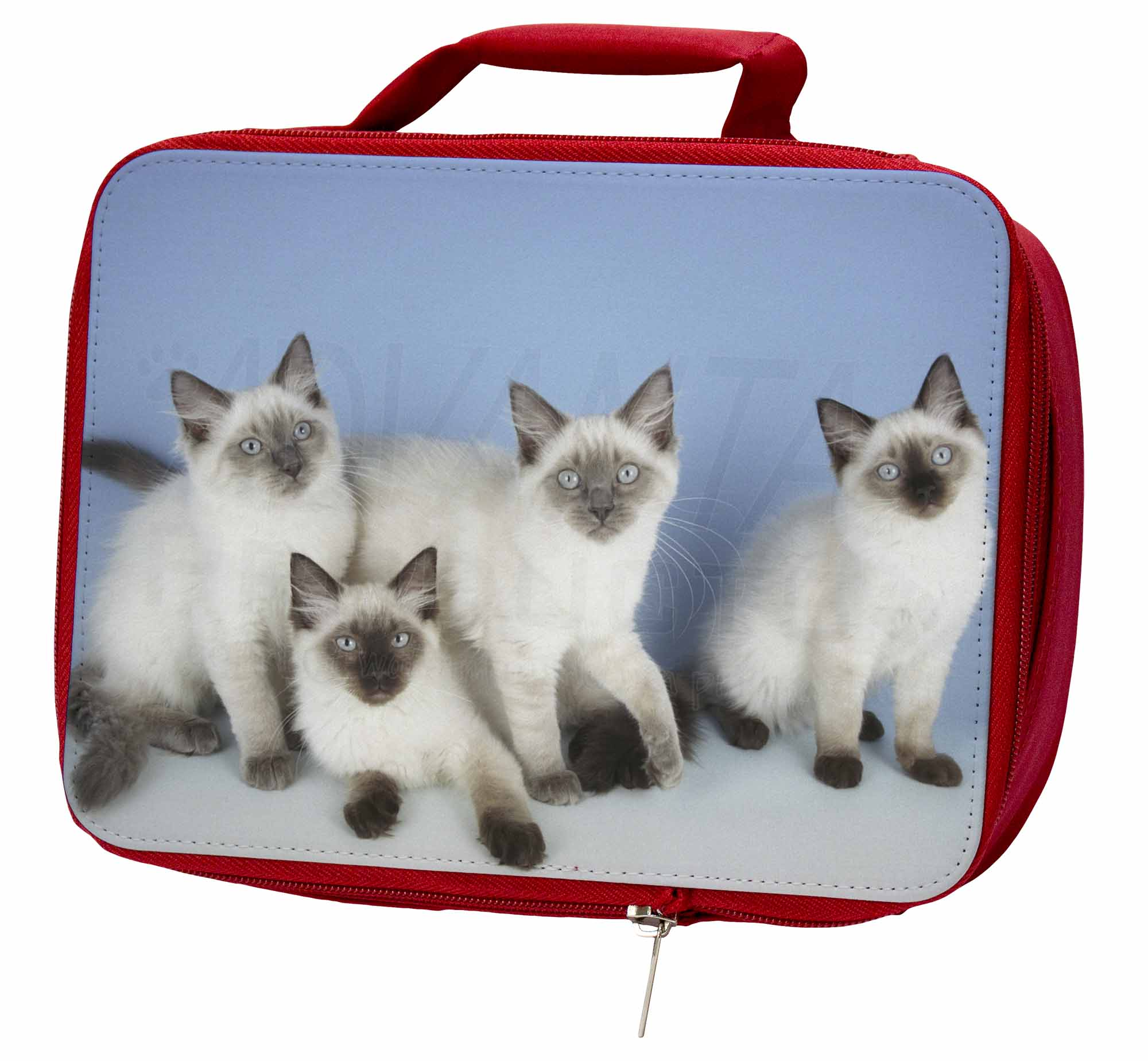Ragdoll Kittens Red Insulated Red Kittens School Lunch Box/Picnic Bag, AC-19LBR fe93fe