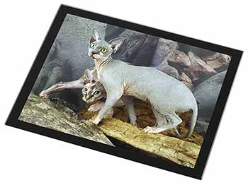 Sphynx Cat Black Rim High Quality Glass Placemat, Great Present