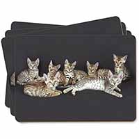 Bengal Kittens Posing for Camera Picture Placemats in Gift Box