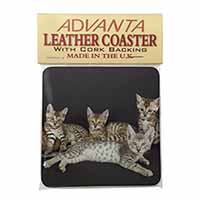 Bengal Kittens Posing for Camera Single Leather Photo Coaster Perfect Gift