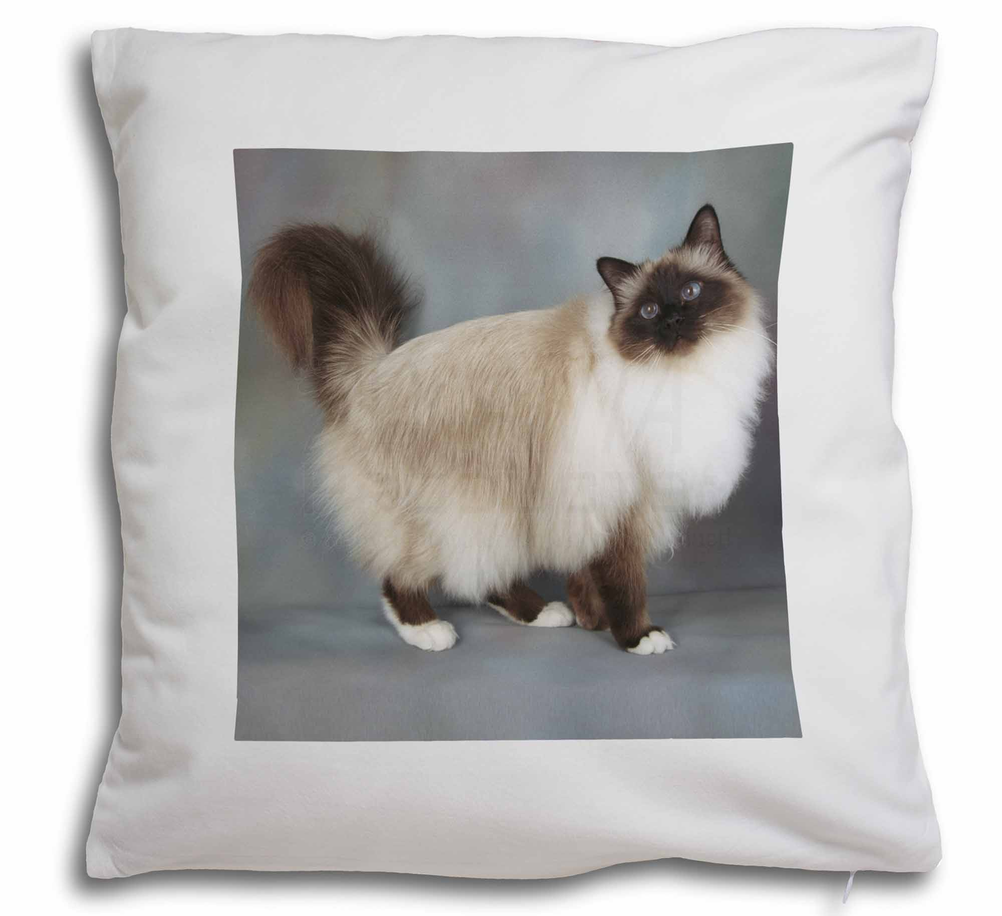 AC-30-CPW Gorgeous Birman Cat Soft Velvet Feel Cushion Cover With Inner Pillow