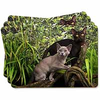 Two Burmese Cats Picture Placemats in Gift Box