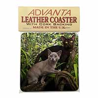 Two Burmese Cats Single Leather Photo Coaster Perfect Gift