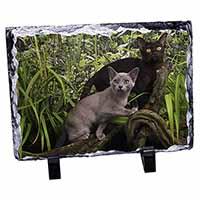 Two Burmese Cats Photo Slate Photo Ornament Gift