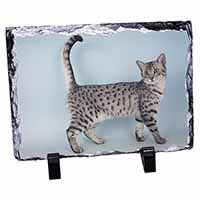 Egyptian Mau Cat Photo Slate Christmas Gift Idea