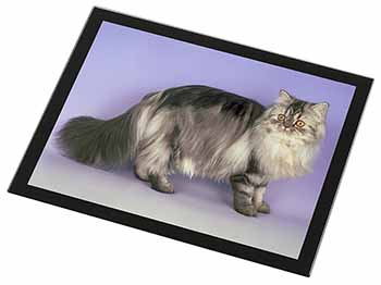Silver Grey Persian Cat Black Rim High Quality Glass Placemat, Great Present