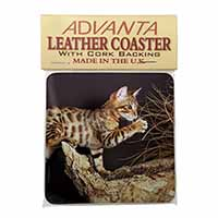 A Gorgeous Bengal Kitten Single Leather Photo Coaster Perfect Gift