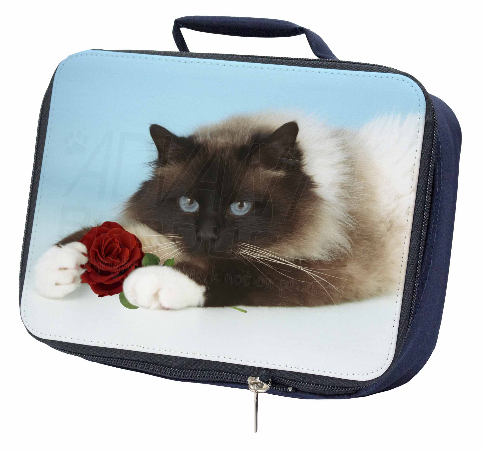 AC-159RLBN Ragdoll Kitten Cat with Red Rose Navy Insulated School Lunch Box Bag