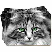 Gorgeous Green Eyes Cat Picture Placemats in Gift Box
