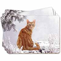 Ginger Winter Snow Cat Picture Placemats in Gift Box