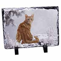 Ginger Winter Snow Cat Photo Slate Christmas Gift Idea