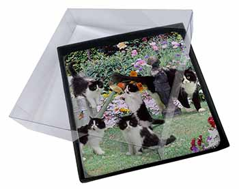 4x Cats and Kittens in Garden Picture Table Coasters Set in Gift Box