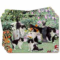 Cats and Kittens in Garden Picture Placemats in Gift Box