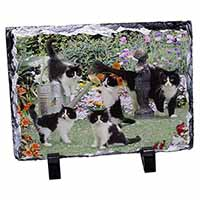 Cats and Kittens in Garden Photo Slate Photo Ornament Gift