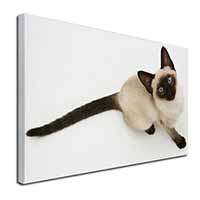 "Siamese Cat Ex Large 30""x20"" Picture Wall Art"