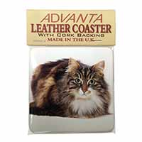 Beautiful Brown Tabby Cat Single Leather Photo Coaster Perfect Gift
