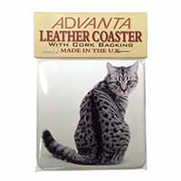 Silver Spot Tabby Cat Single Leather Photo Coaster Perfect Gift
