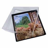 4x Ginger Cat and Kittens in Barn Picture Table Coasters Set in Gift Box