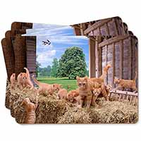 Ginger Cat and Kittens in Barn Picture Placemats in Gift Box