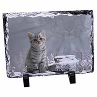Animal Fantasy Cat+Snow Leopard Photo Slate Christmas Gift Ornament
