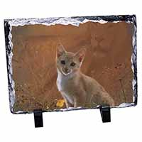 Lion Spirit on Kitten Watch Photo Slate Christmas Gift Idea