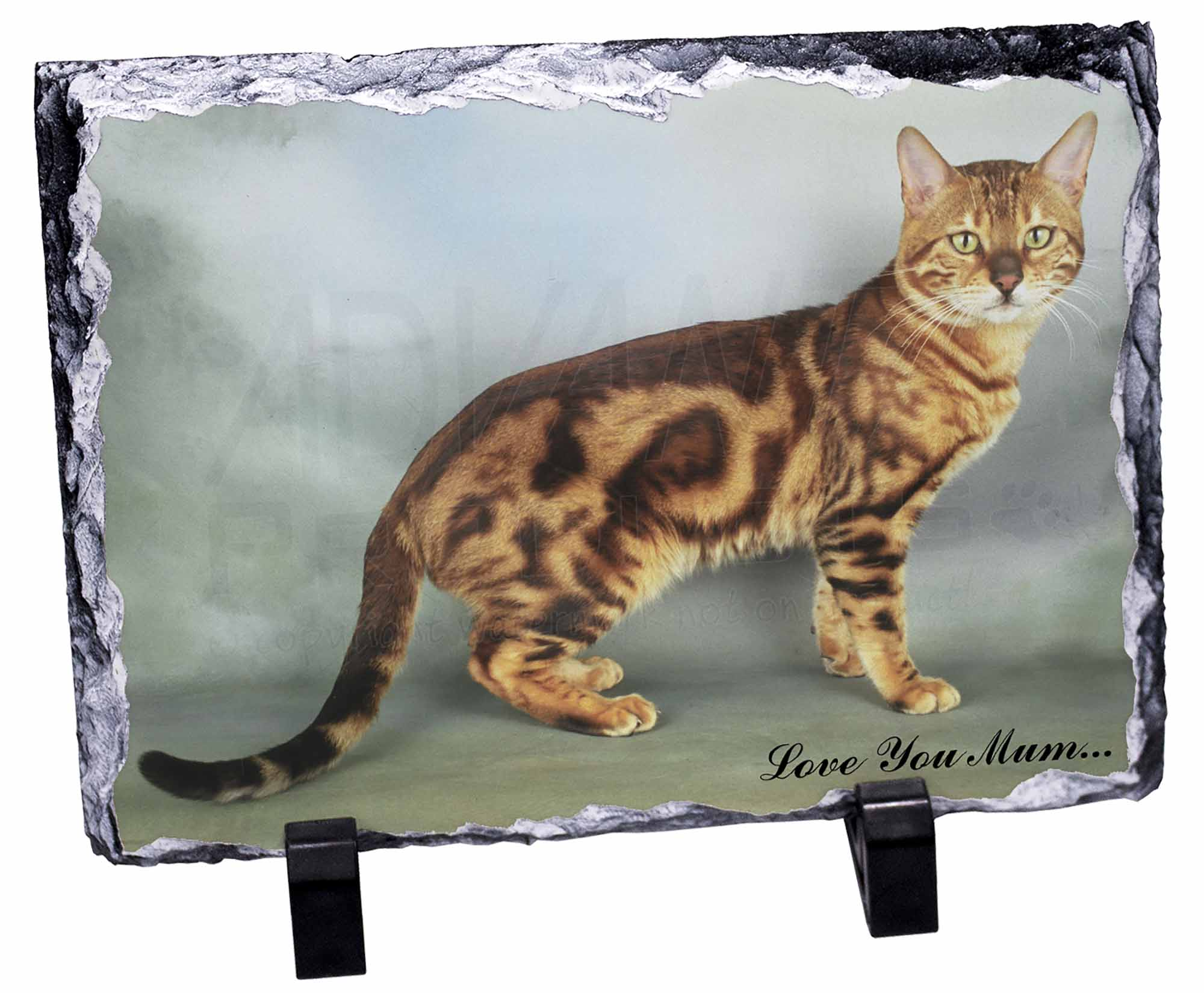 Bengal Cat Gifts Uk