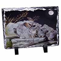 South American Chinchillas Photo Slate Christmas Gift Ornament