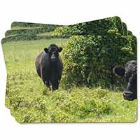 Cute Black Bull Picture Placemats in Gift Box