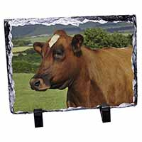 A Fine Brown Cow Photo Slate Christmas Gift Idea