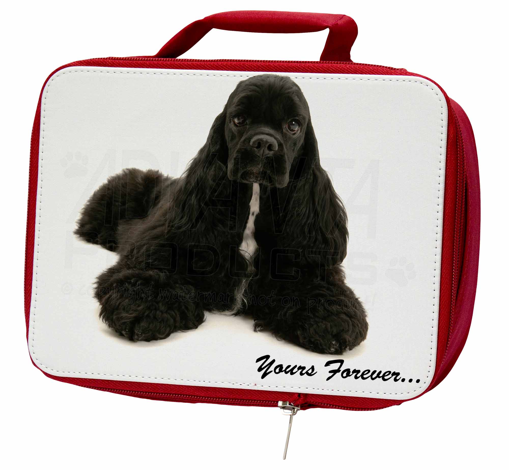 American School Cocker Spaniel 'Yours Forever' Insulated Red School American Lunch B, AD-ACS2LBR ab743c