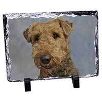 Airedale Terrier Dog Photo Slate Photo Ornament Gift