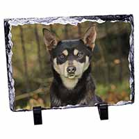 Australian Kelpie Dog Photo Slate Photo Ornament Gift