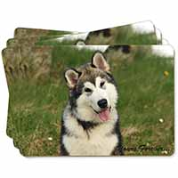 "Alaskan Malamute ""Yours Forever..."" Picture Placemats in Gift Box"