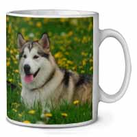 Alaskan Malamute Dog Coffee/Tea Mug Gift Idea