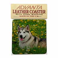 Alaskan Malamute Dog Single Leather Photo Coaster Perfect Gift