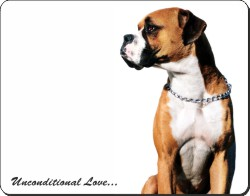 Boxer with Love, AD-B21u