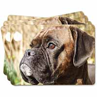 Brindle Boxer Dog Picture Placemats in Gift Box