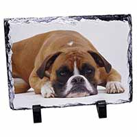 Red and White Boxer Dog Photo Slate Photo Ornament Gift