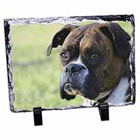 Brindle and White Boxer Dog Photo Slate Christmas Gift Idea