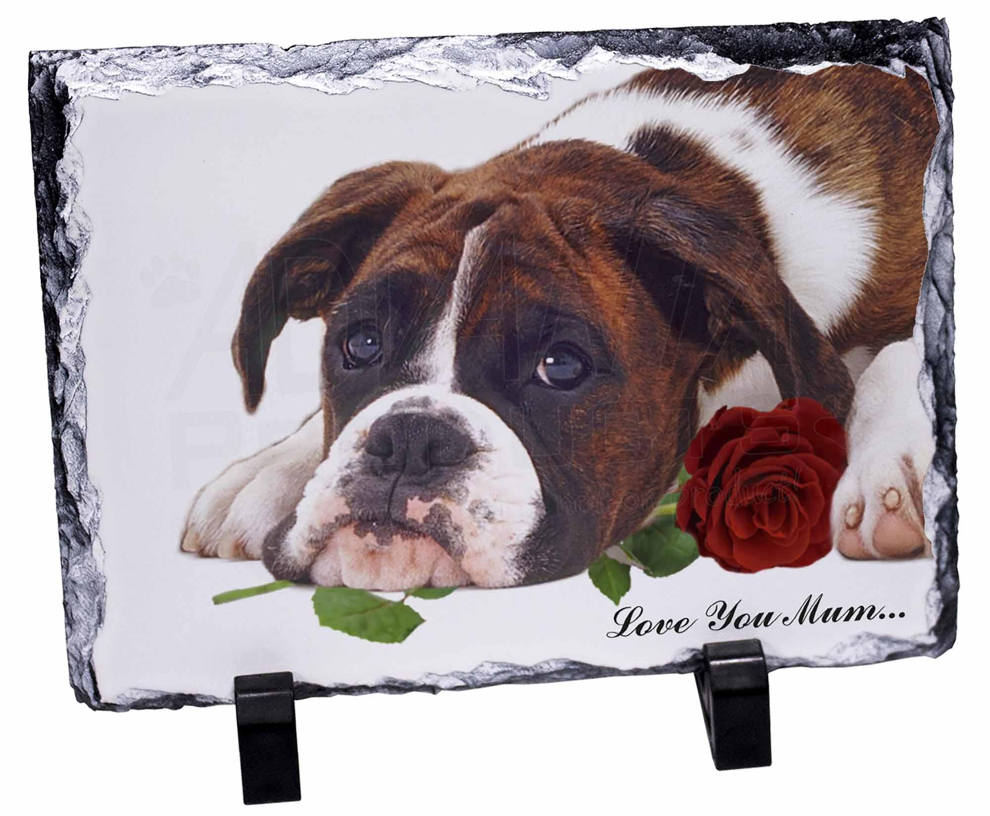 boxer hund rose 39 liebe die sie mama 39 foto schiefer. Black Bedroom Furniture Sets. Home Design Ideas