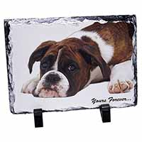 "Boxer Dog ""Yours Forever..."" Photo Slate Christmas Gift Idea"