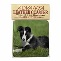 Border Collie Dog Single Leather Photo Coaster Perfect Gift