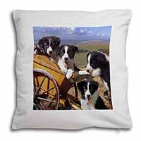 Border Collie Soft Velvet Feel Scatter Cushion