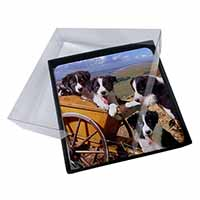 4x Border Collie Picture Table Coasters Set in Gift Box