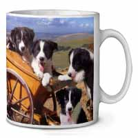 Border Collie Coffee/Tea Mug Gift Idea