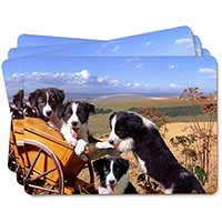 Border Collie Picture Placemats in Gift Box