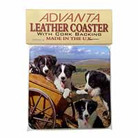 Border Collie Single Leather Photo Coaster Perfect Gift